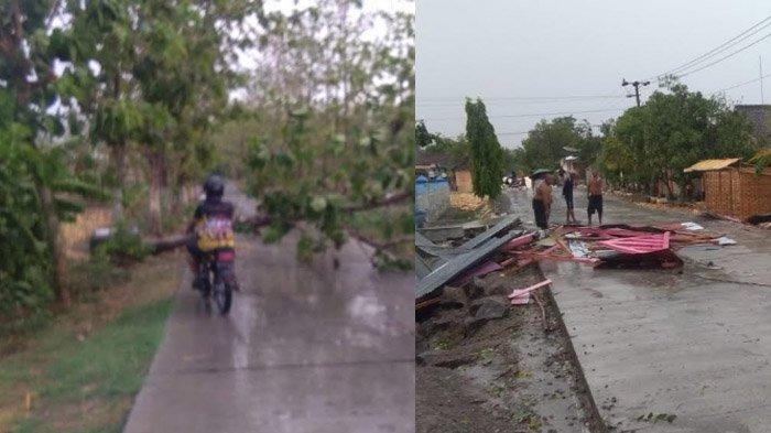 Hujan Disertai Angin Kencang kembali Landa Bojonegoro akibatkan Pohon Roboh dan Puluhan Rumah Rusak