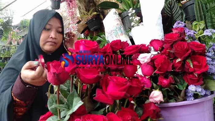 Mawar Merah Masih Jadi Ikon Perayaan Valentine, Toko di Kayoon Surabaya Alami Peningkatan Pembelian
