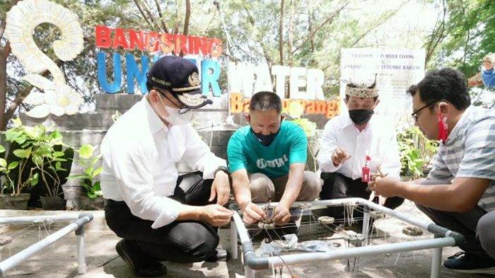 Tanam Cemara Udang di Bangsring, Bupati Anas : Pulihkan Wisata dan Patuhi Protokol Kesehatan