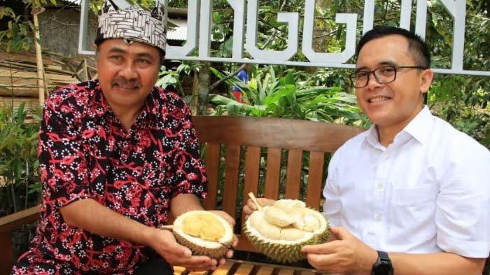 Durian Banyuwangi Bisa Dipesan Online, Pengiriman Sampai Luar Jawa