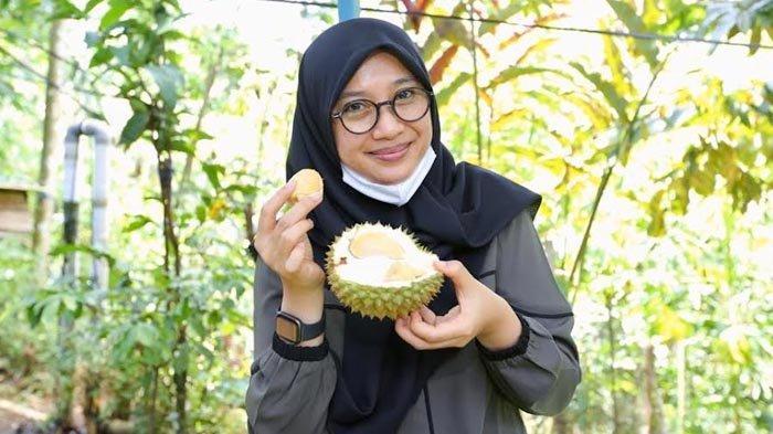 Sudah Panen Durian Boneng Asal Banyuwangi, Mulai Diburu Pembeli