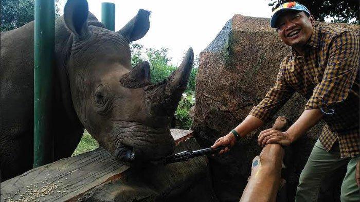 Feeding Rhino, Sensasi Memberi Makan Badak, Wisata Baru di Kabupaten Pasuruan