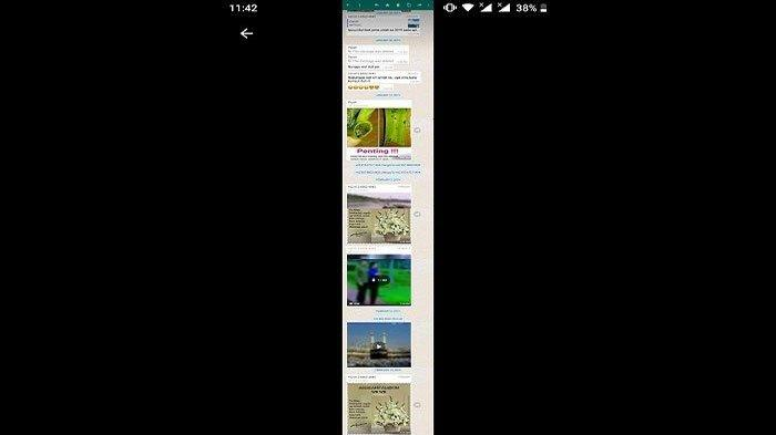 Cara Mudah Screenshot Chat Whatsapp Wa Panjang Tanpa Terpotong Cukup Pakai Aplikasi Ini Surya