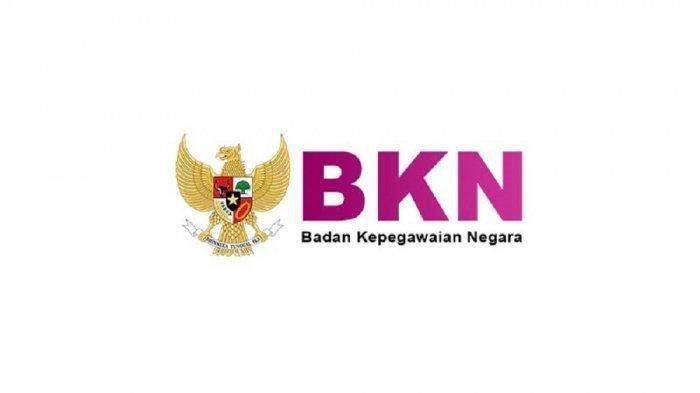 Ilustrasi: Daftar Formasi CPNS 2019 untuk BKN Surabaya, Jakarta, & Regional Lain, Lengkap dengan Kualifikasinya
