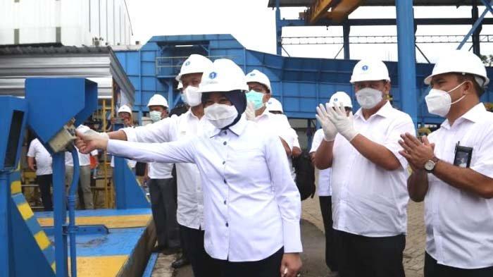 Buka Giling, PT IGG Targetkan Produksi Gula 61.000 Ton Tahun ini