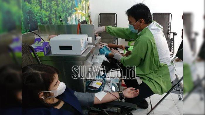 Hari Donor Darah Sedunia, PMI Jember Kukuhkan Lumbung Pendonor Pemula