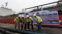 Stop Ekspor CPO, Jokowi Siap Sewa Lawyer Top Hadapi Asing