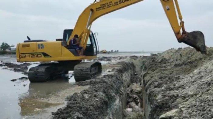 Butuh 7 Jam untuk Mengubur 48 Ekor Ikan Paus yang Mati Terdampar di Pantai Mondung Bangkalan Madura