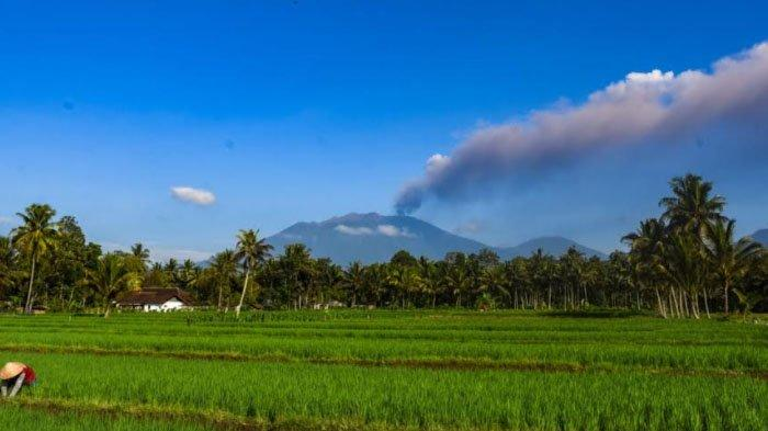 Erupsi Gunung Raung, Stok Pangan di Kabupaten Banyuwangi Dipastikan Cukup