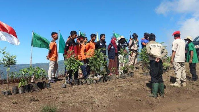 Gerakan 1 Kader 1 Pohon, Pemuda Muhammadiyah di Jatim Tanam Ribuan Pohon Secara Serentak