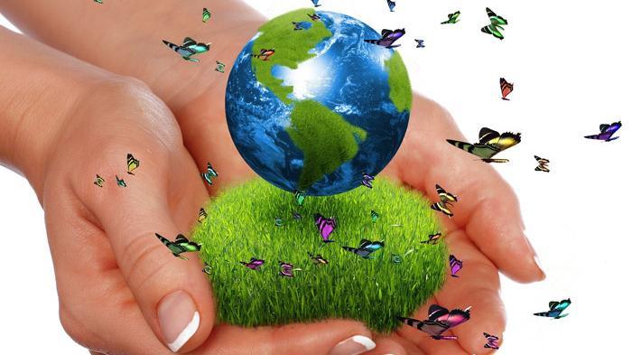 Aksi Hijau Agar Bumi Bisa Bertahan Lebih lama Lagi