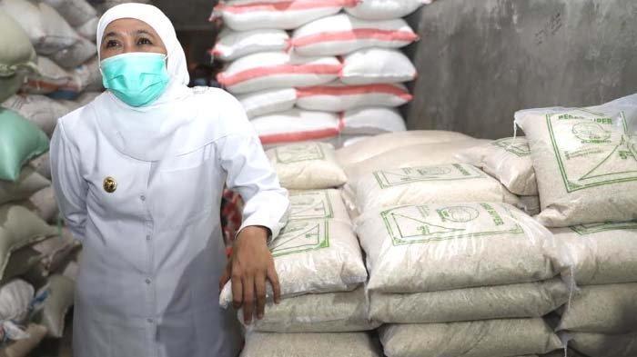 Gubernur Khofifah Upayakan Petani Dapat Kredit PEN dari Bank Jatim