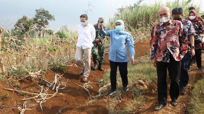 Gubernur Khofifah Akan Bangun Sekolah Animasi di KEK Singhasari Malang