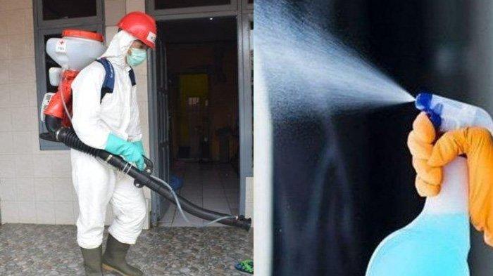 Tak Kalah Ampuh, Begini Cara Membuat Desinfektan dengan Bahan Alami, Tanpa Pemutih Pakaian & Alkohol