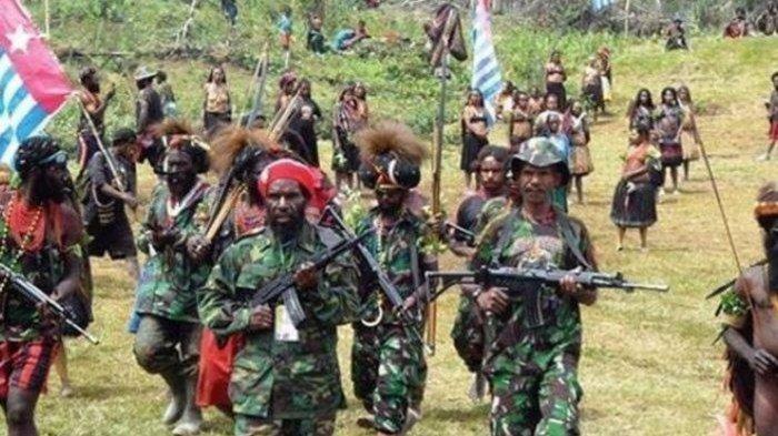 Sosok Elly Bidana Komandan KKB Papua yang Diklaim TNI Tewas Saat Baku Tembak di Distrik Kiwirok
