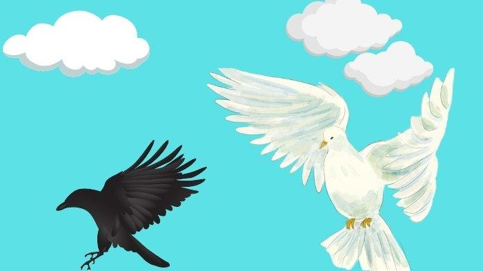 Arti Mimpi Burung Merpati Pertanda Baik bagi Karier dan Asmara, Waspada jika Burung Gagak Muncul