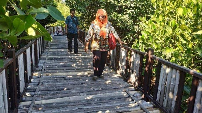 Awas, Jogging Track di Mangrove Wonorejo Licin Saat Musim Hujan