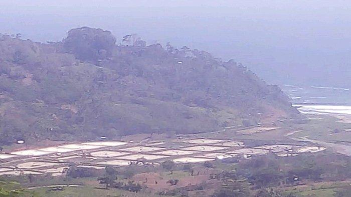 Panorama Pantai, Tebing Sampai Paralayang; Jadi Alasan Pemudik Nekat Melalui Jalur Tikus ke Blitar - jalur-tikus-blitar-jadi-jalur-wisata.jpg