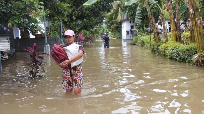 Ribuan Hektare Lahan di Taman Nasional Meru Betiri (TNMB) Jember Kritis, Disebut Pemicu Banjir