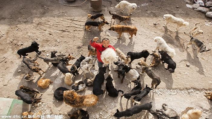 FOTO - Mantan Jutawan Terlilit Hutang Gara-gara Selamatkan Ribuan Anjing Liar