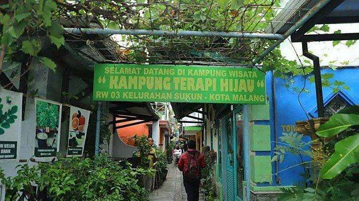 Ajak Peduli Lingkungan, Kampung Terapi Hijau di Kota Malang Banyak Tanam Toga