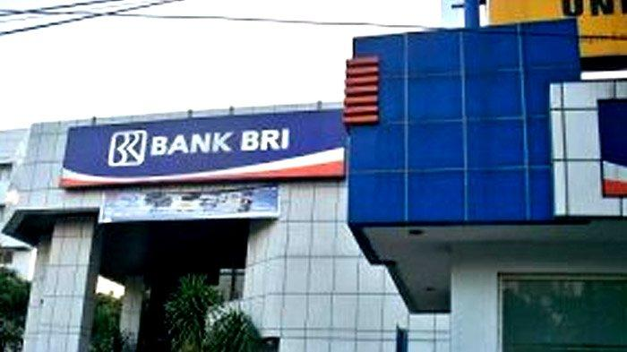 Cara Mengajukan KUR Super Mikro di Bank BRI untuk Penerima BLT UMKM Program BPUM, Bisa Melalui Hp