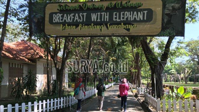 Atlantis Land dan Kebun Binatang Surabaya Jadi Alternatif Destinasi Wisata