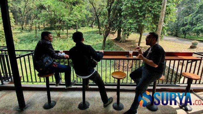 Berwisata ke Pasuruan, Coba Ngopi di Hutan Kebun Raya Purwodadi - kebun-raya-purwodadi-ngopi3.jpg