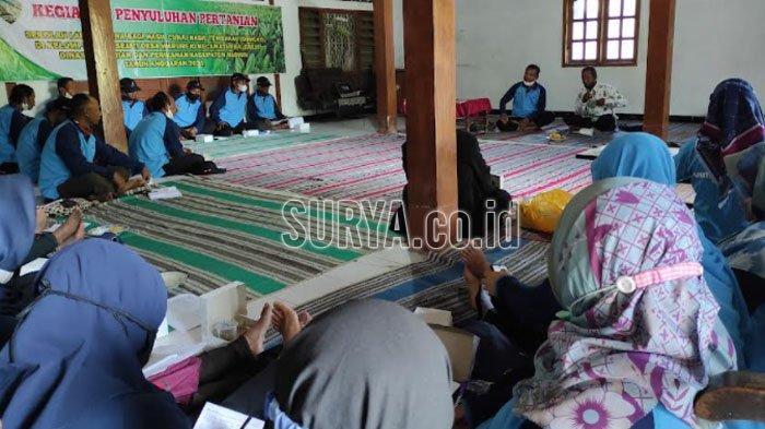 Sekolah Lapang Dana Bagi Hasil Cukai Tembakau (DBHCT) di Desa Warurejo, Kecamatan Balerejo, Kabupaten Madiun, Rabu (13/10/2021).