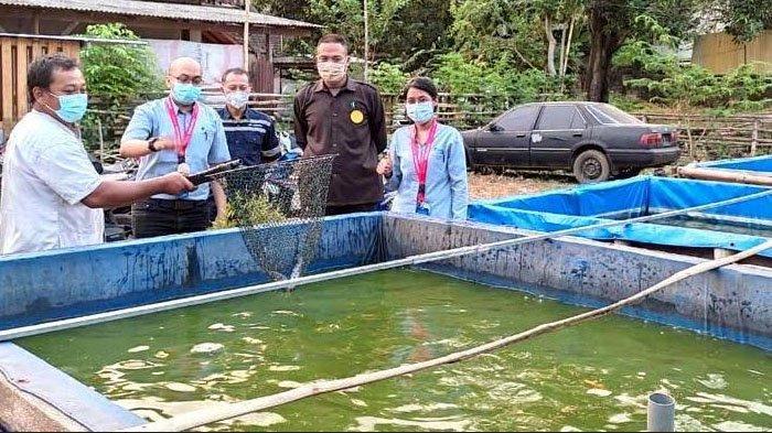 Warga Desa Pacarkeling Kabupaten Pasuruan Gembira Dapat Bantuan Budidaya Lele
