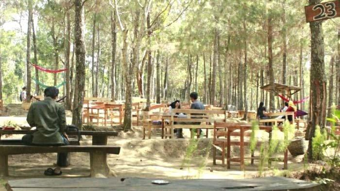 Ngopi di Kaki Gunung Wilis Kediri, Kedai Kopi 66 Tawarkan Suasana Sejuk dan View Manjakan Mata