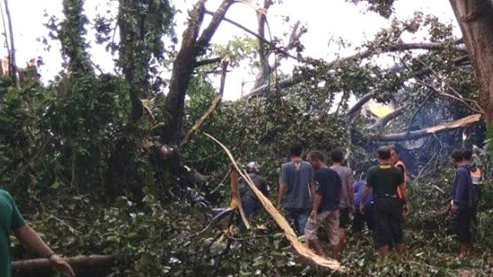 Kronologi Pohon Tumbang di Kota Kediri yang Tewaskan Mahasiswa IAIN Kediri saat Ngopi di Warung