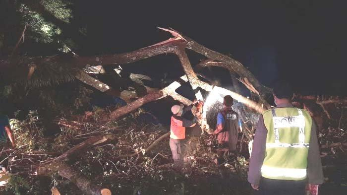 Hujan Deras - Angin Kencang akibatkan 3 Warung Ambruk Tertimpa Pohon di Kawasan Wisata Ubalan Kediri