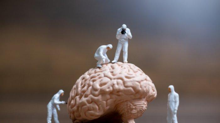 LIFEPACK: 4 Bagian Otak Besar Beserta Fungsinya, Simak Cara Menjaga Kesehatannya