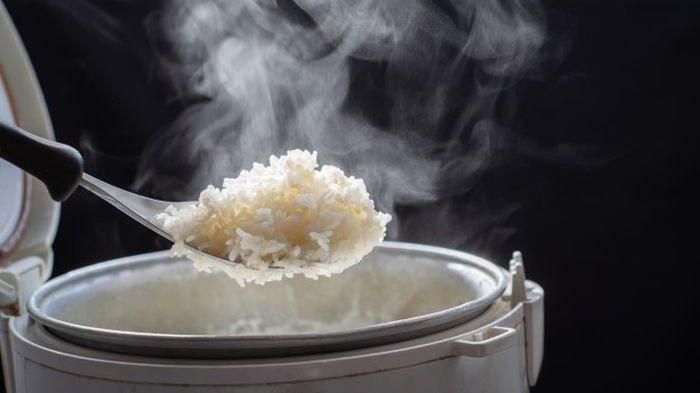 Daftar Kesalahan saat Masak Nasi, Rice Cooker Tak Boleh Dibiarkan Tertutup Saat Nasi Sudah Matang