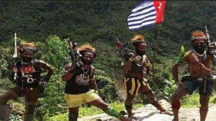 4 FAKTA Serangan Propaganda KKB Papua ke Pemerintah Indonesia, Cari Kesalahan di Tengah Wabah Corona