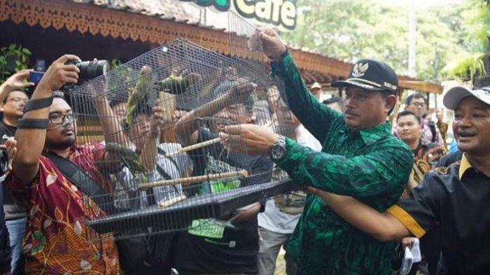 Kota Madiun  Kini Punya Konservasi Burung Gelatik Jawa