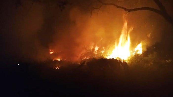 Lahan Kosong yang Dipenuhi Rumput Liar di Kota Mojokerto Terbakar Malam ini