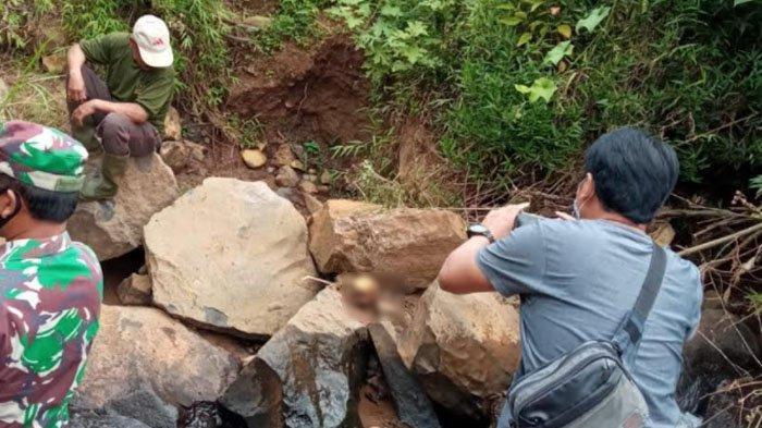 Petani Ponorogo Temukan Tengkorak Korban Longsor Banaran Empat Tahun yang Lalu