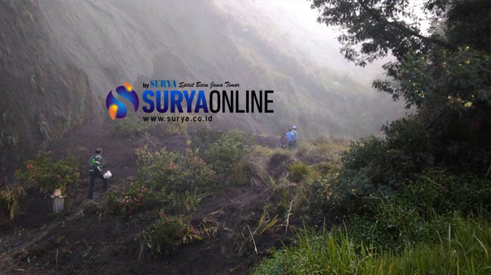 Breaking News - Jalur Bromo Longsor, Wisatawan Terisolir di Lautan Pasir