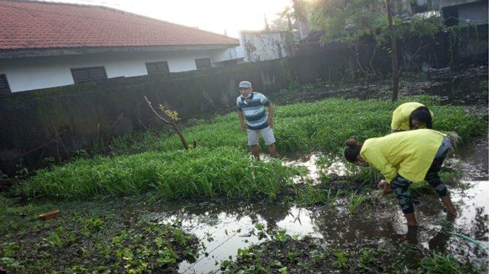 Memanfaatkan Lahan Kosong Untuk Bertanam Sayuran