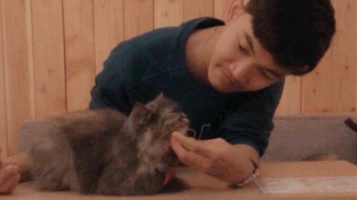 Keseruan di Neko Kepo Cat & Cafe Malang Bersama Kucing