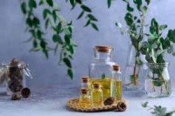 TIPS SEHAT, Sediakan di Rumah, Ini 8 Manfaat Minyak Kayu Putih, Buat Terapi Anosmia