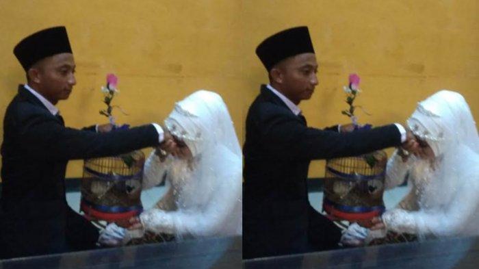Pasangan di Ponorogo Pakai Mas Kawin Burung Kenari untuk Nikah, Tamu Ngakak, 'Gacor'