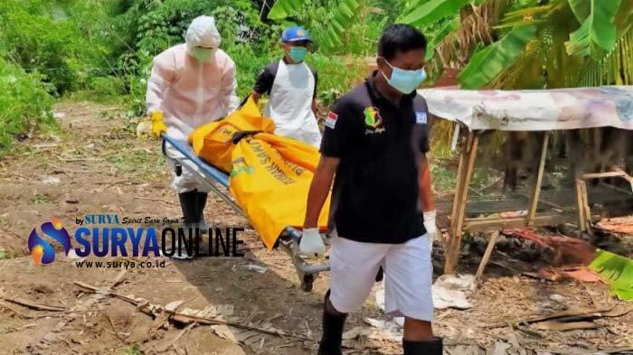 Mayat Pria Ditemukan di Kebun Singkong di Porong Sidoarjo, Diduga Sudah Beberapa Hari Tewas