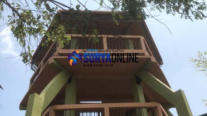 Wajah Baru Menara Pandang Taman Baluran Situbondo, Pengunjung Bisa Lihat Keindahan dari Ketinggian