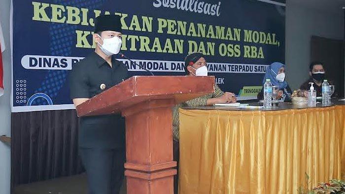 Investasi Pertanian dan UMKM di Trenggalek Naik Pesat saat Pandemi, Mas Ipin Jabarkan Kemudahan Izin