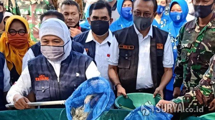 Disperindag Jatim Sebut Ekspor Udang Jawa Timur Meningkat di Masa Pandemi Covid-19