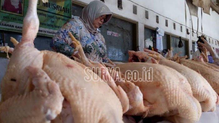Mendekati Lebaran, Harga Daging Ayam di Kota Blitar Tembus Rp 36 Ribu Per Kilogram