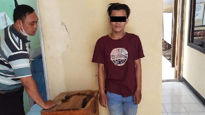 Pemuda Tepergok Warga Congkel Kotak Amal Masjid di Sugio Lamongan, Ternyata Sudah Beraksi di 10 TKP